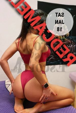 Cleis erotic massage in Joliet